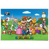Pyramid Maxi Poster: Super Mario (Characters)