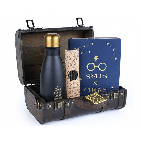 Pyramid Premium Gift Set Harry Potter: Trouble Finds Me